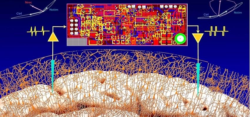 Closed-loop Brain-Computer Interface
