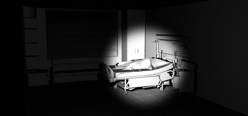 Hospital Room Scene, Memoir II, 2016