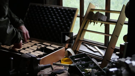Vimeo link to woodpecker
